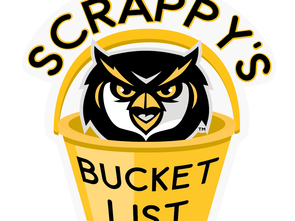 Scrappy logo in yellow bucket